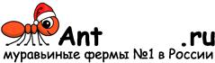 Муравьиные фермы AntFarms.ru - Иркутск
